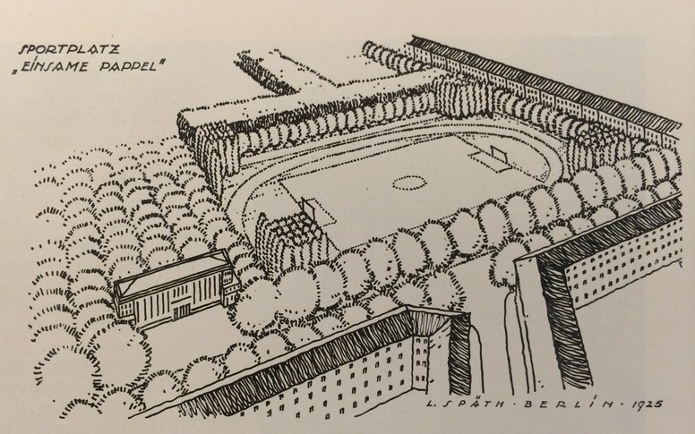 Landscape, Sport, Environment: The Spaces of Sport from the Early Modern Period to Today