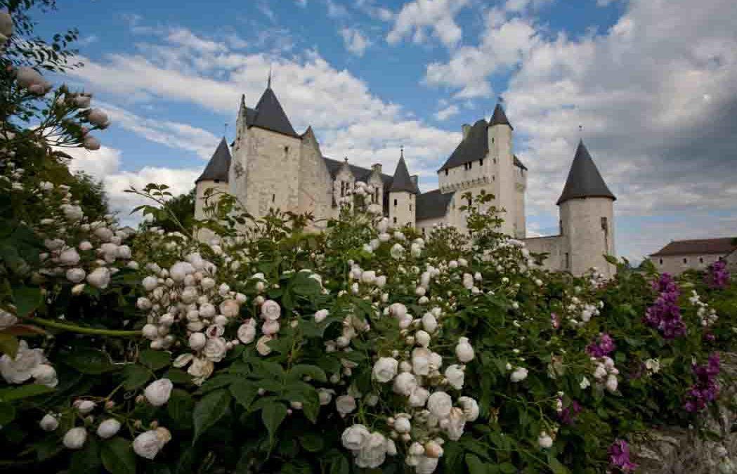 450 rose al Castello di Rivau