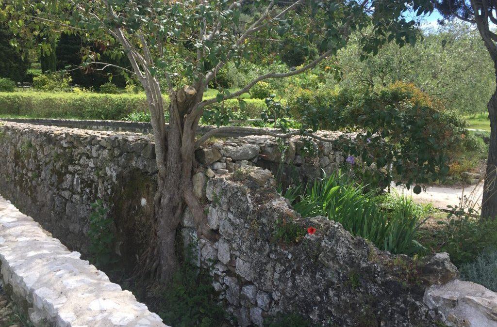 Il giardino del profumo