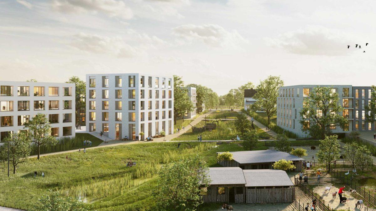 Südlich Auf'm Tetelberg – POLA Berlin + Dichter Architektur