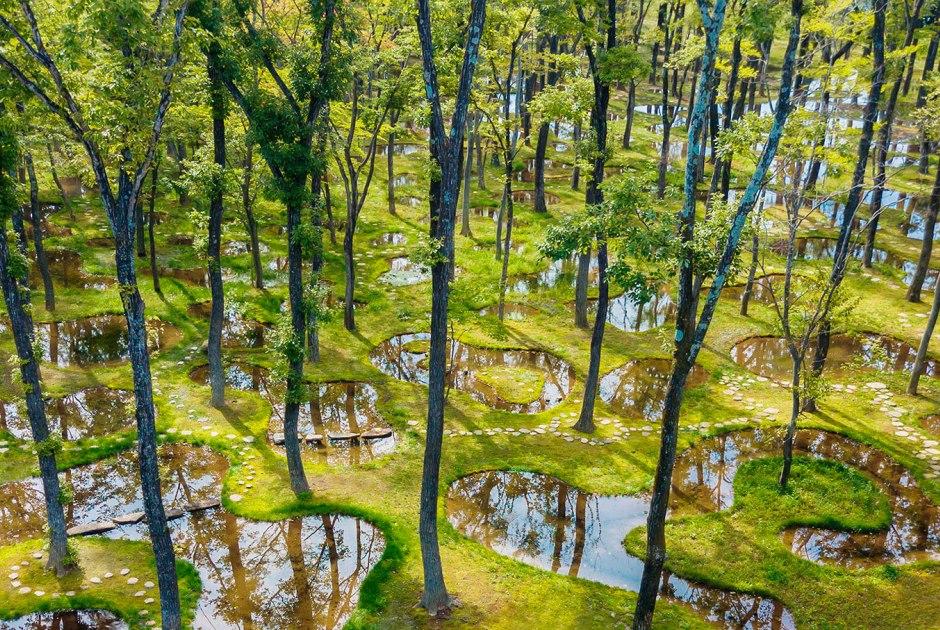Botanical Garden Art Biotop / Water Garden – Junya Ishigami